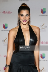 attends the 2015 Premios Lo Nuestros Awards at American Airlines Arena on February 19, 2015 in Miami, Florida.